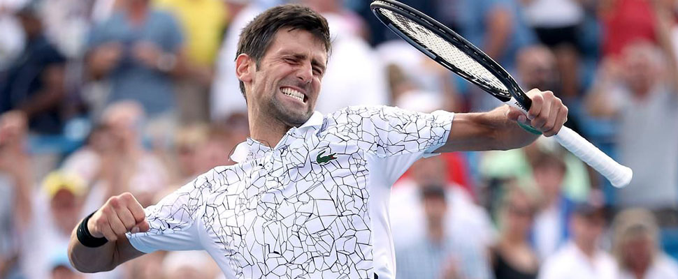 Novak Djokovic has what it takes to being once again the number 1 in world tennis