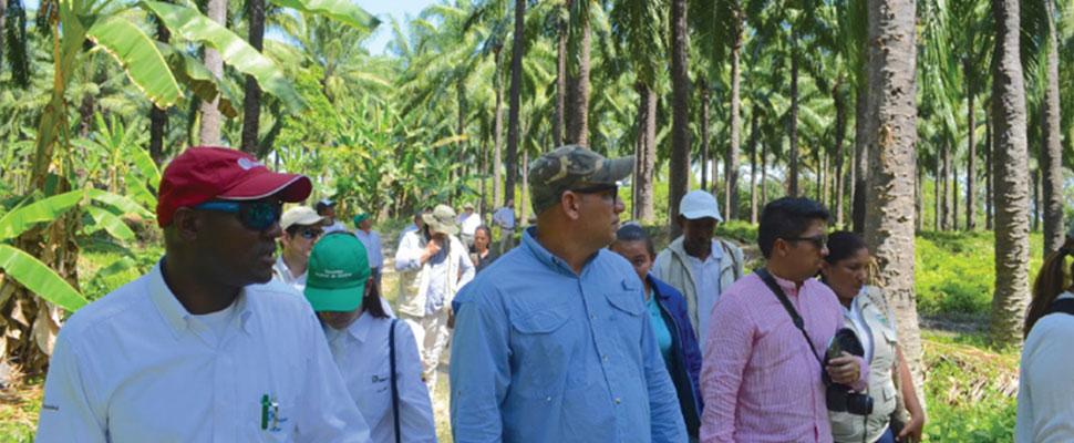 Agroindustria: Esto nos dejó el foro Paisaje Palmero Biodiverso