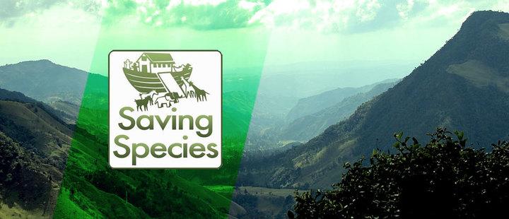 ¡SavingSpecies en Colombia! El proyecto para conservar los Andes Occidentales