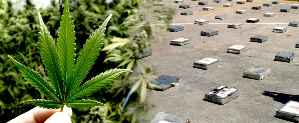 Has the anti-drug policy failed?