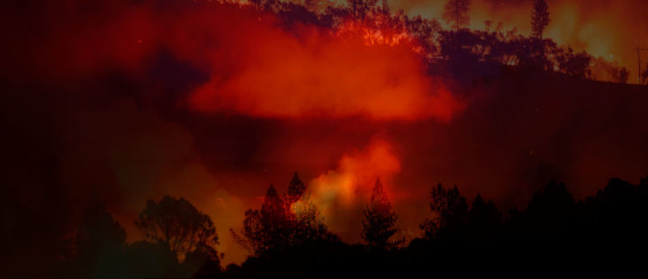 California under threat: 23 people died in the devastating wildfire