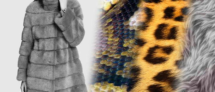 ¿Sabías que se utilizan 30 mapaches para hacer un abrigo de piel?