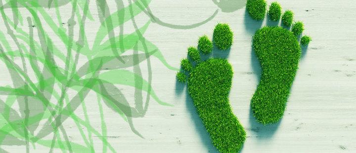 Huella medioambiental