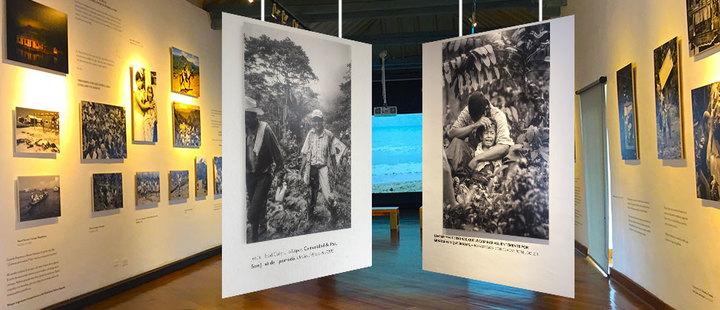'El Testigo': una radiografía de la guerra en Colombia