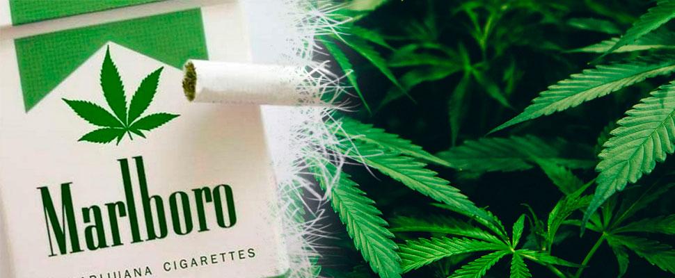 Malboro ¿Cigarrillos y cannabis?