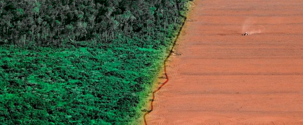 La Amazonía se está acabando