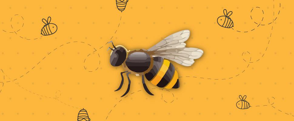Salvando las abejas: 3 formas para protegerlas