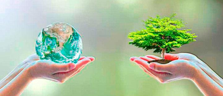 ¿Cómo termina el 2018 para el medio ambiente?