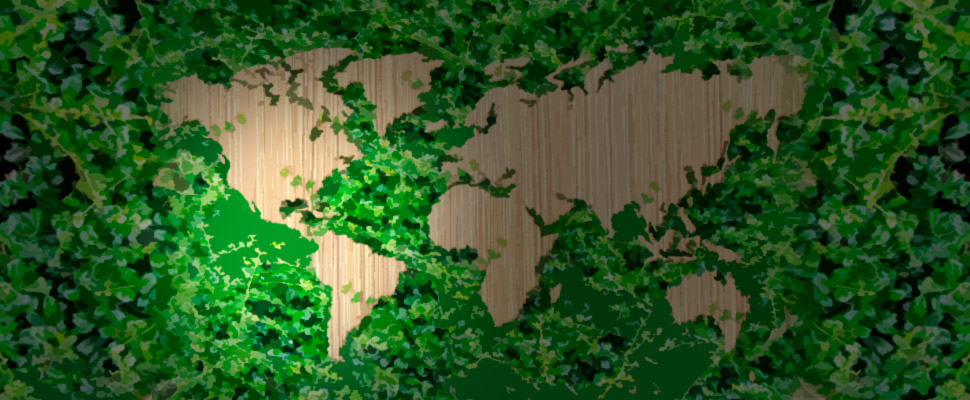 Is Latin America close to building 'green countries'?
