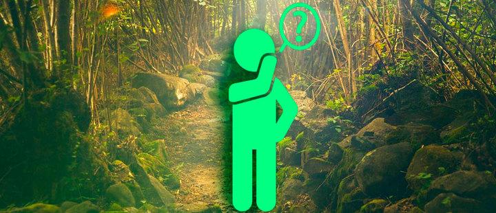 ¿Qué tanto sabes sobre medio ambiente?