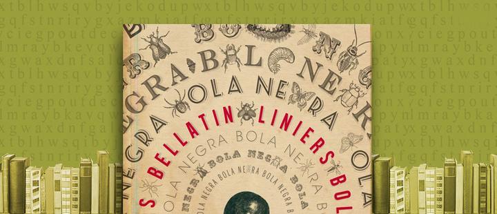 """Latam Booklook: """"Bola negra"""" de Mario Bellatin y Liniers"""