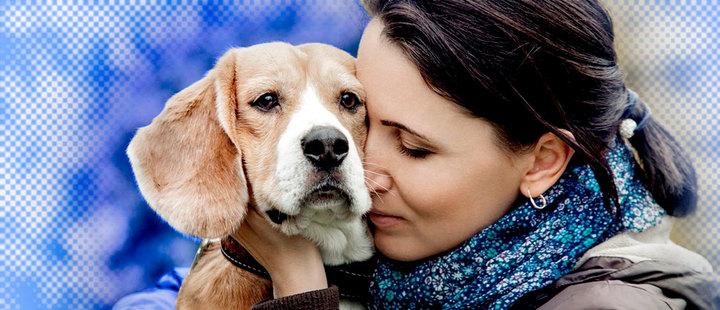 ¡Tu mascota puede ayudarte a curar enfermedades!