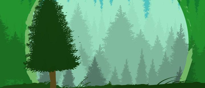 Día internacional de los bosques: ¿Por qué son importantes?