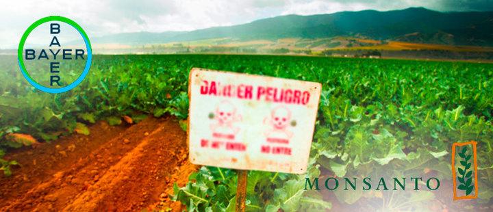 Glyphosate: an atrocity for Latin America