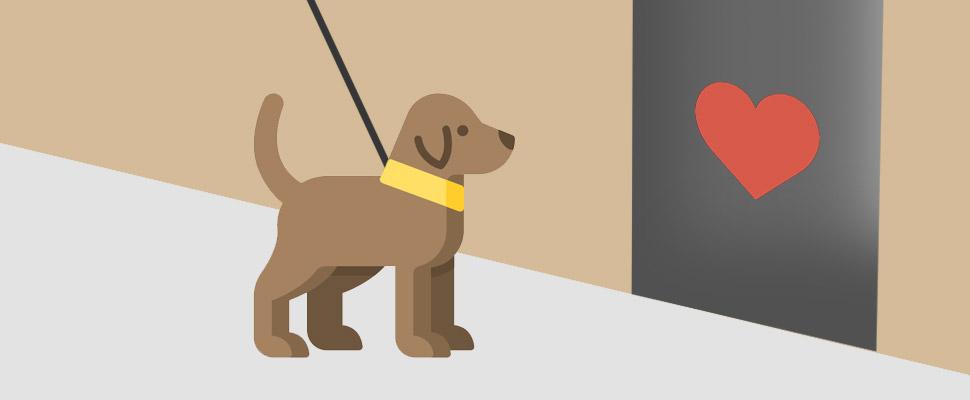 Hoteles Pet Friendly: no dejes a tu mascota en casa