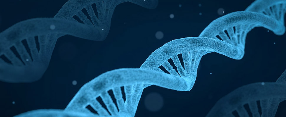 The Science of Epigenetics And DNA Home Testing. How Can It Improve One's Life?