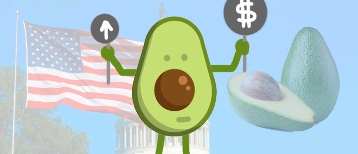 Trump's threats are already reflected in the price of avocados