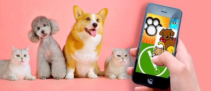 Estas son las mejores aplicaciones móviles para tu mascota