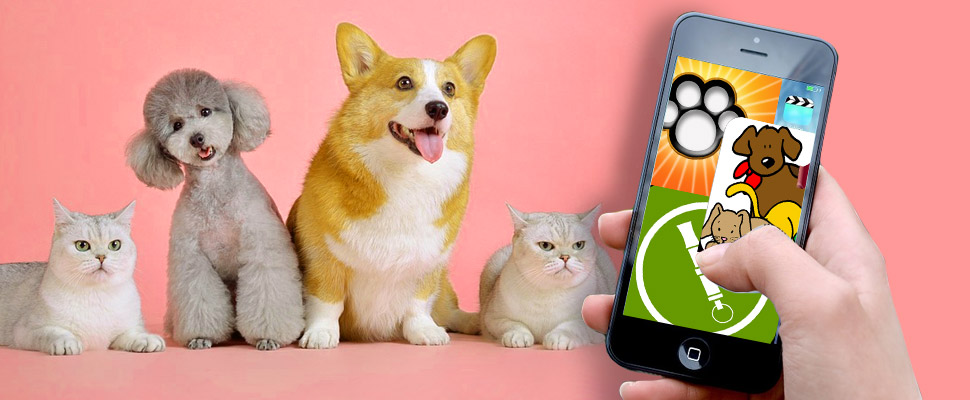 These are the best apps for your pet