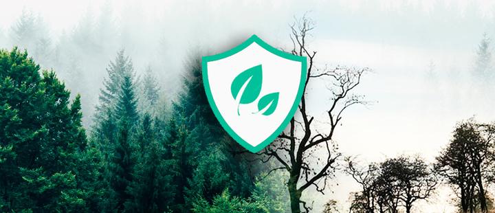 Los bosques: un recurso natural y económico que debe ser protegido