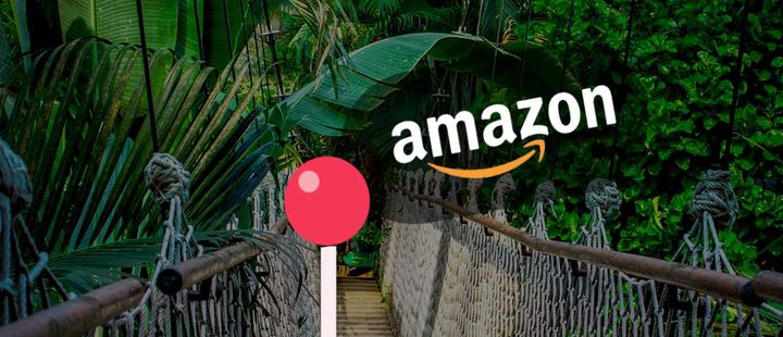 Amazonas  - logo amazon