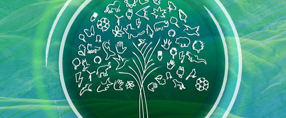 Todo lo que debes saber del Día Mundial del Medio Ambiente