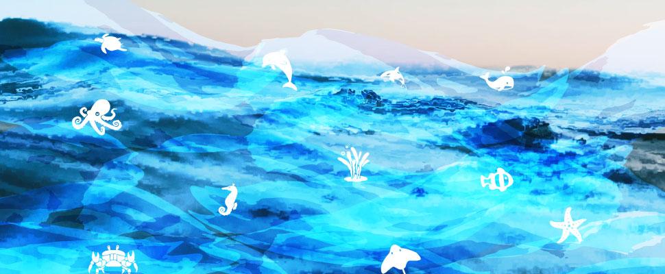Dia Mundial de los Océanos: ¡tomemos conciencia de nuestro impacto!