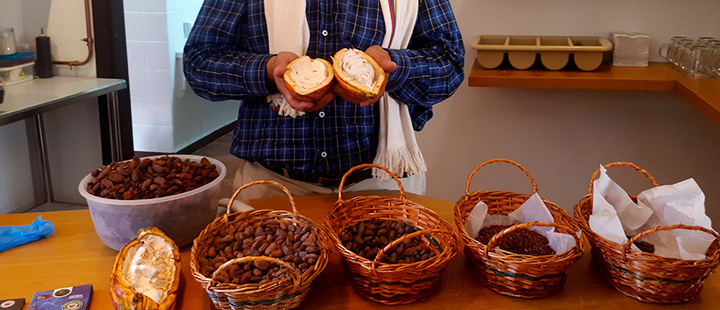 Farmer showing cocoa products
