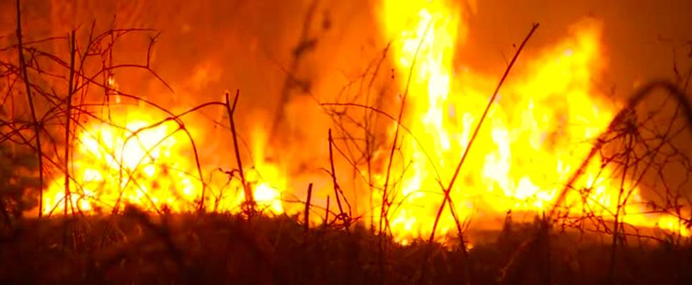 Fires racing in Amazon