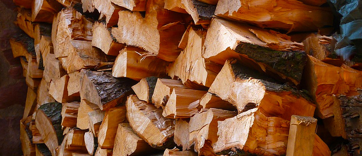 Pieces of wood cut for cooking.