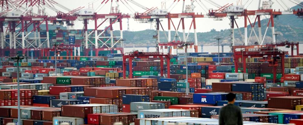 Hombre mirando un puerto con containers.