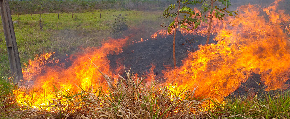 A small fire burns by the side of the road between Porto Velho and Humaita in Brazil's Amazonas state.