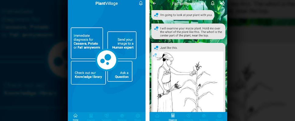 Screenshots of the Nuru PlantVillage application.
