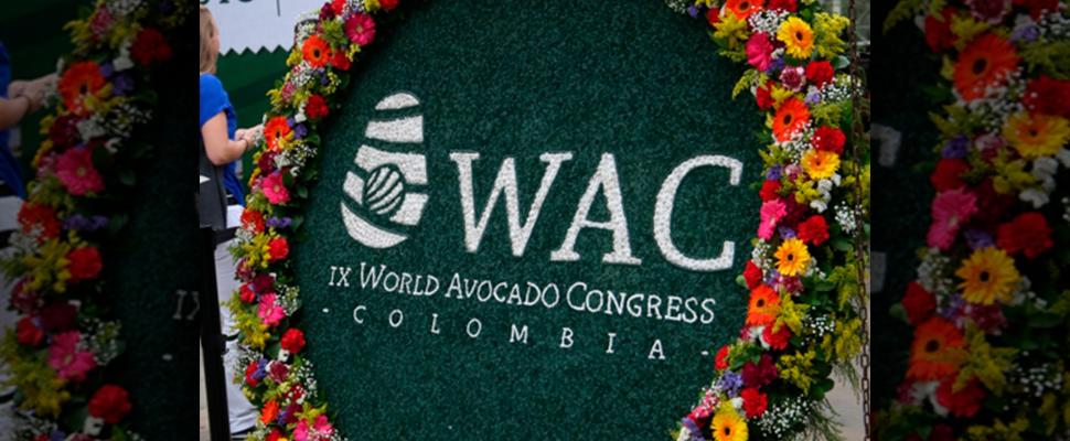 Congreso Mundial de Aguacate en Medellín.