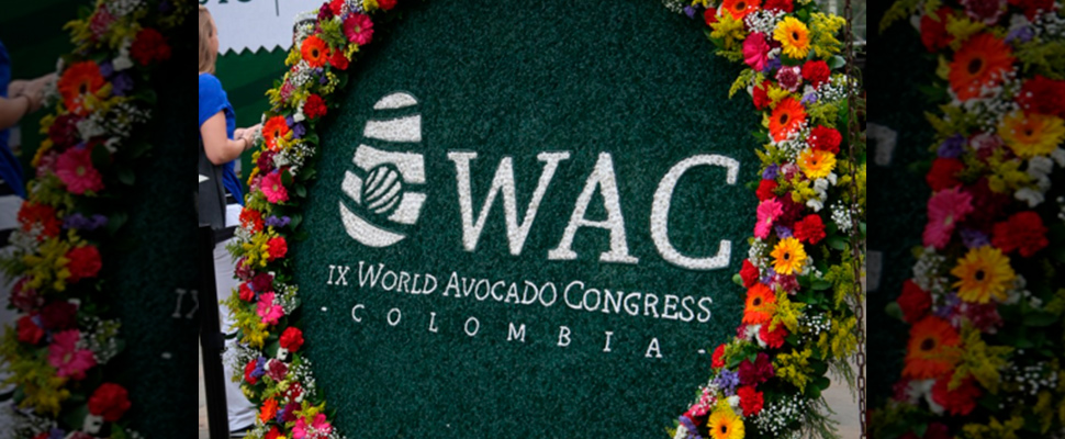 Avocado World Congress in Medellin.