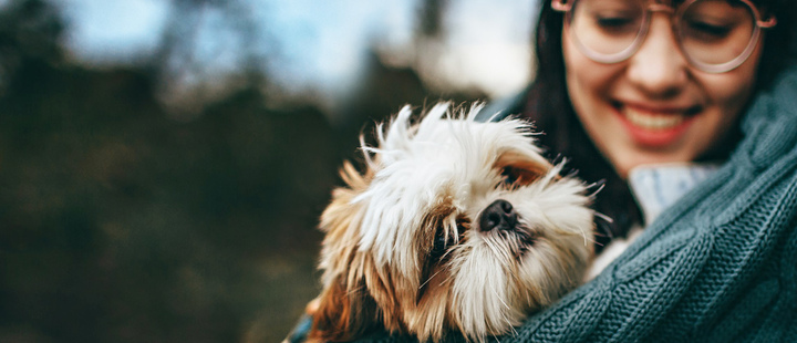 Dog ownership may be associated with longer life