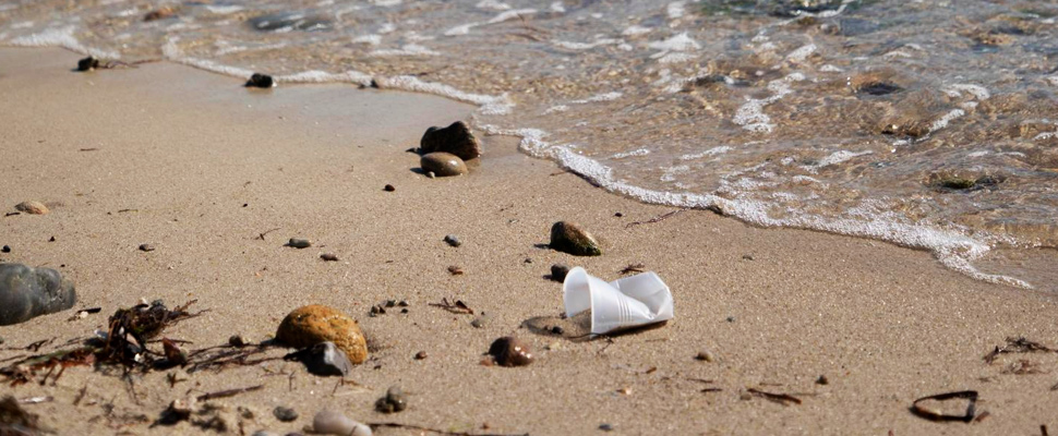 Polystyrene pollution at the tide's edge.