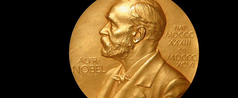 Photograph of a Nobel Prize medal.