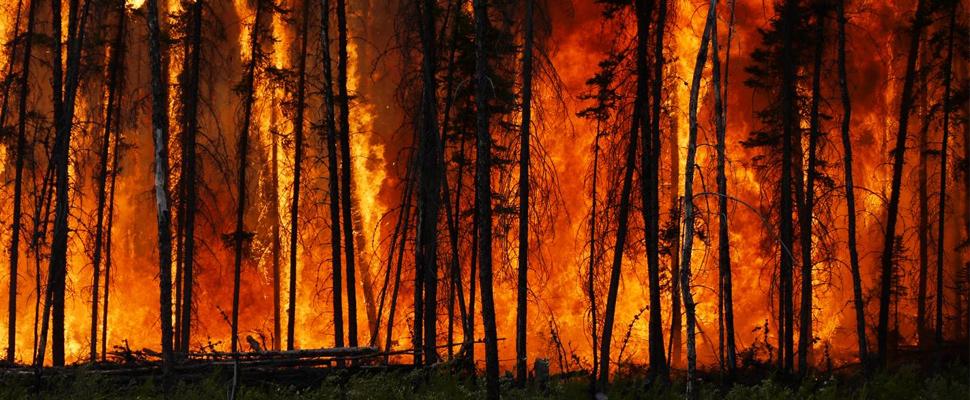 La calidad del aire de NYC disminuyepor incendios forestales a kilómetros de distancia