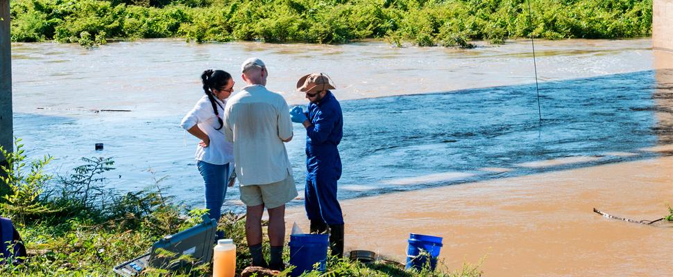 En un puente en el centro de Cuba cerca de Congojas, al noroeste de Cienfuegos, los investigadores recolectan el agua del río.
