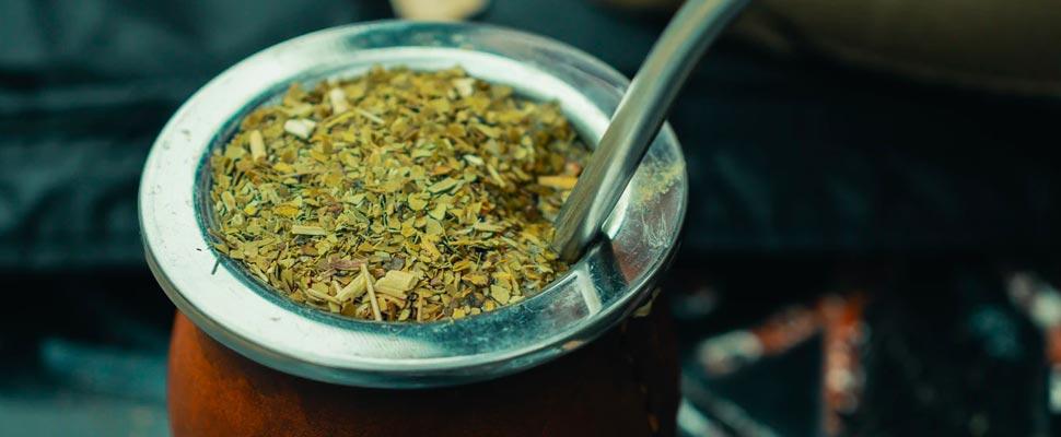 Los beneficios del consumo de la yerba mate