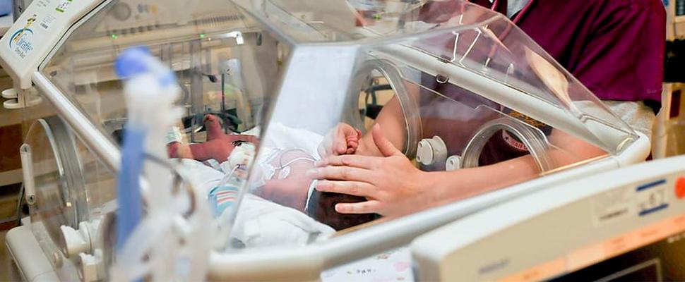 Bebés prematuros pueden recuperar su sistema inmune