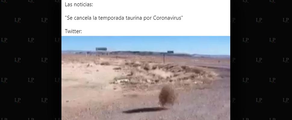 Más y más memes del coronavirus