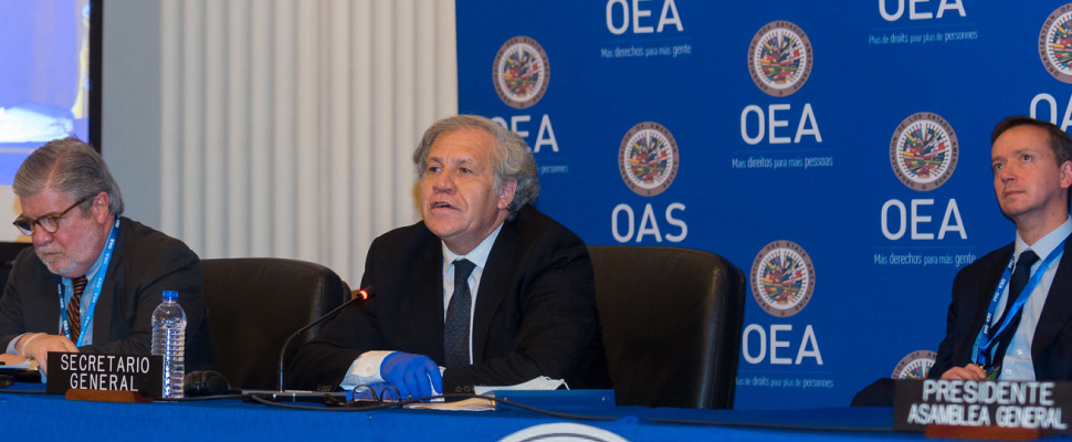Luis Almagro, re-elected at the OAS