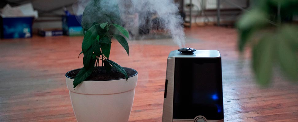 Air purifier in operation.