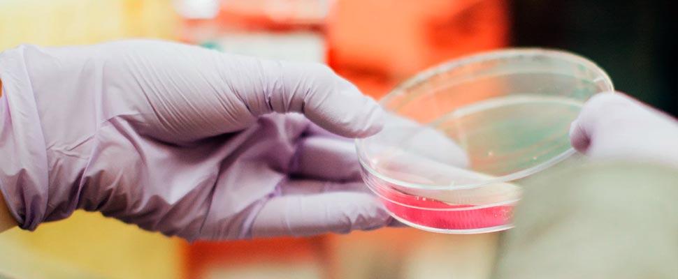 Female scientist with a petri dish