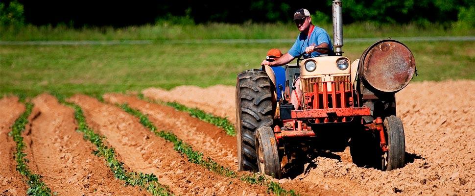 El futuro está golpeando: así se transformará la producción mundial de alimentos