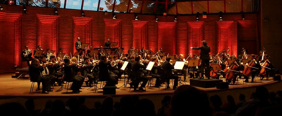 Symphony orchestra during a concert