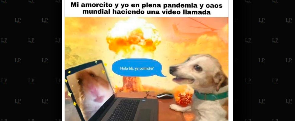Memes para los amores de pandemia