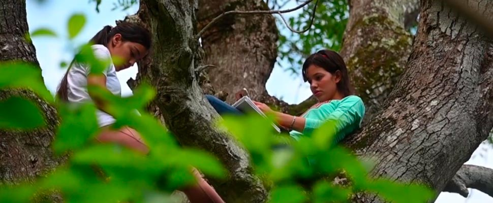 Salvadoran girls taking classes on a tree